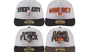 AFC NORTH: Pittsburgh Steelers, Cincinnati Bengals, Baltimore Ravens, Cleveland Browns